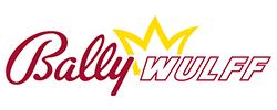 fsh-bally-wulff-logo-250x100